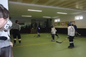 Hallen-Hockey Skater